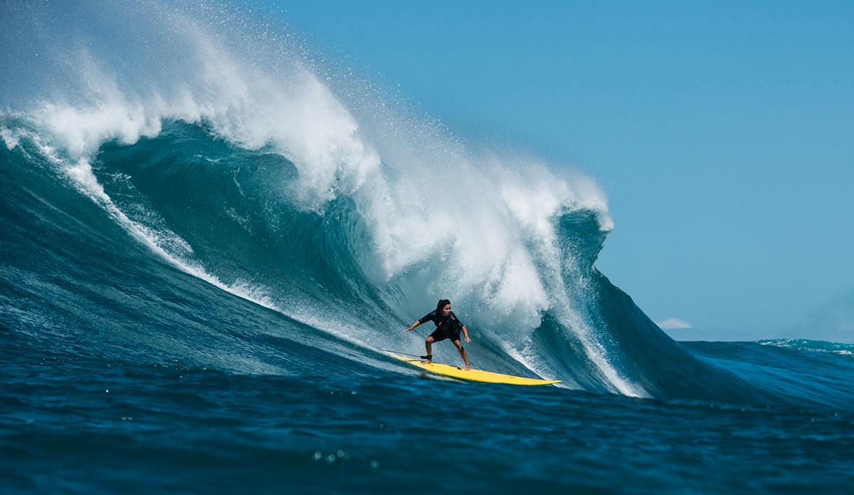 Polly Surfing.jpg