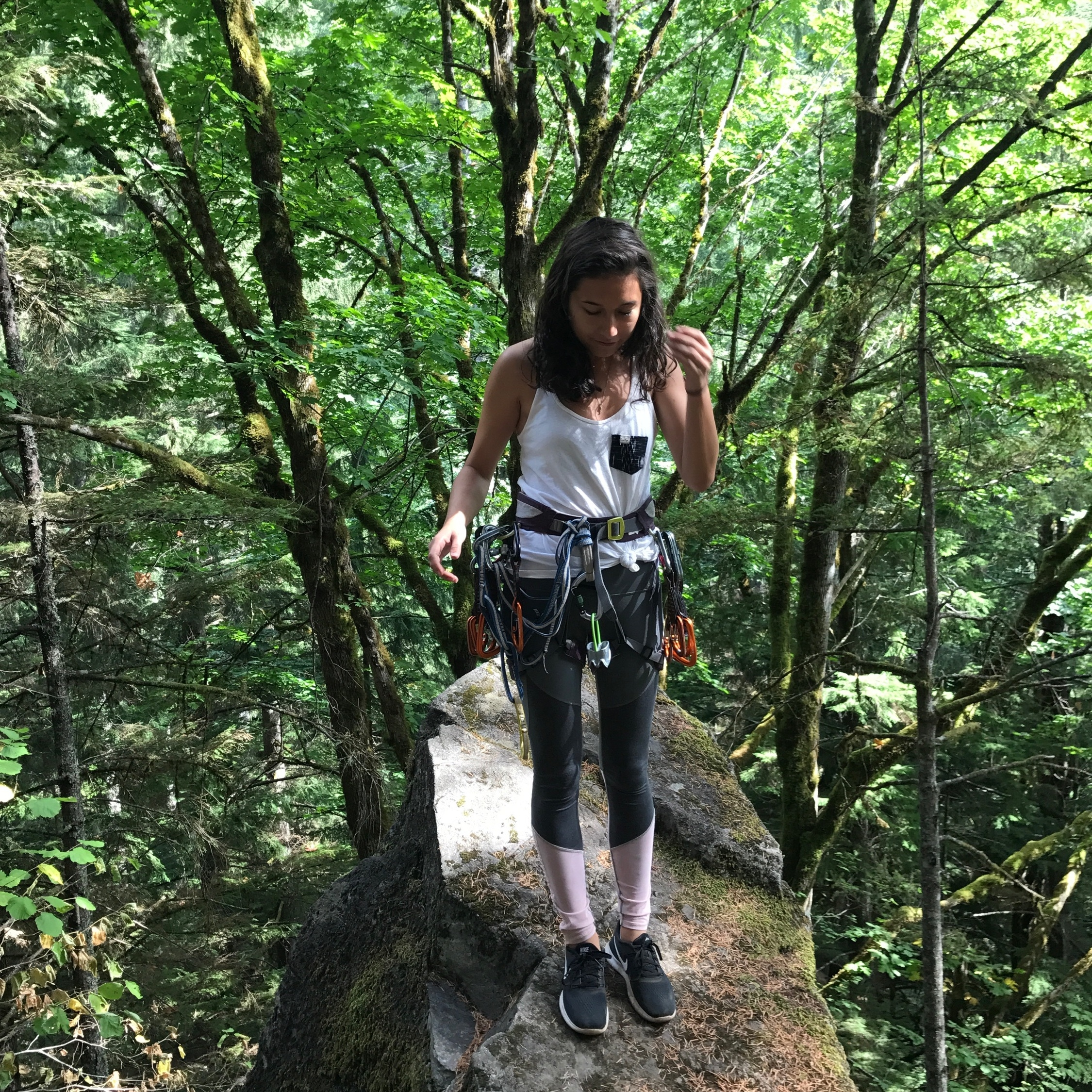 Carolyn Kotowski   Seattle, WA