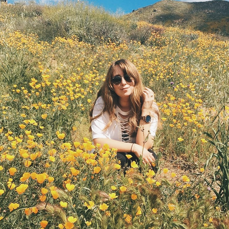 I sported my JORD watch on my most recent trip to LA. I was hiking in a field of poppies and my   Zebrawood & Navy faced watch stood out in the field of yellow flowers. I love that bright Navy watch face, is such a different look from other watches I have had.