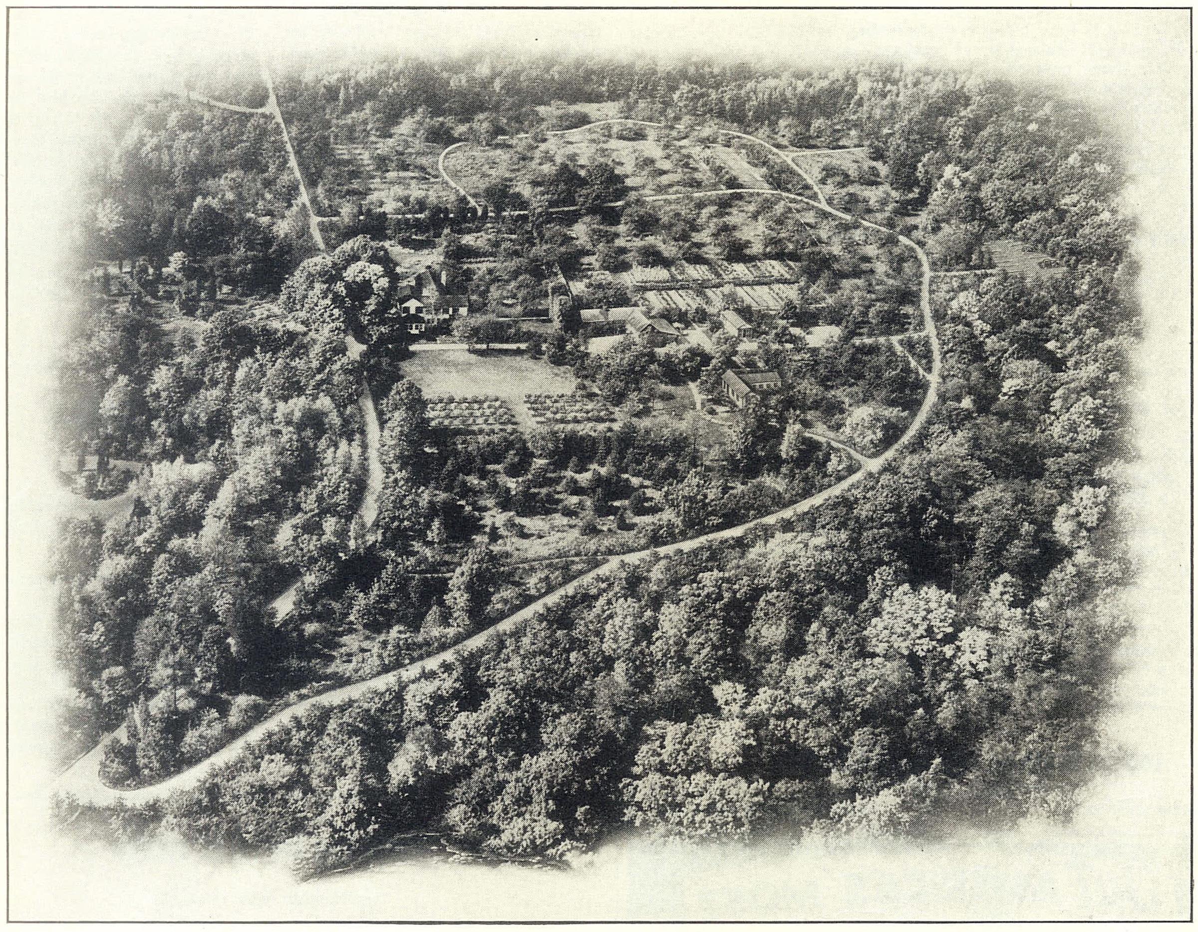 Bartlett Aerial.jpg