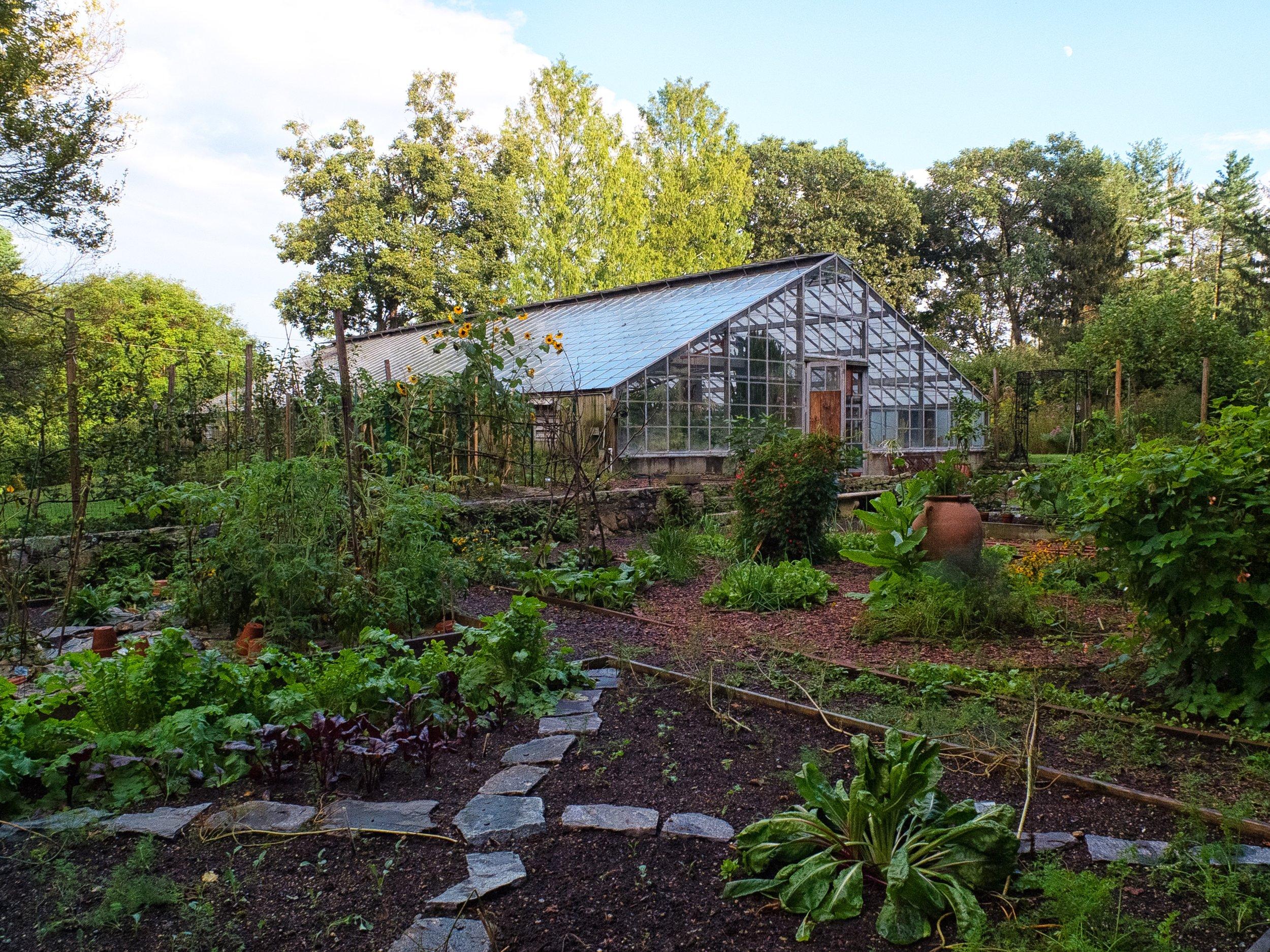 [096] Vegetable Garden.jpg