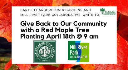 BARTLETT ARBORETUM & GARDENS AND MILL RIVER ARE EXCITED TO PARTNER TO ADD (5).png