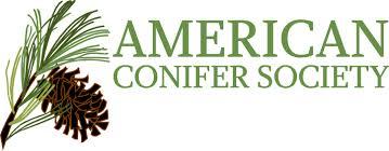 american conifer society.jpg