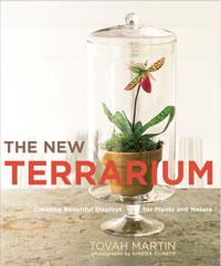 the new terrarium.jpg