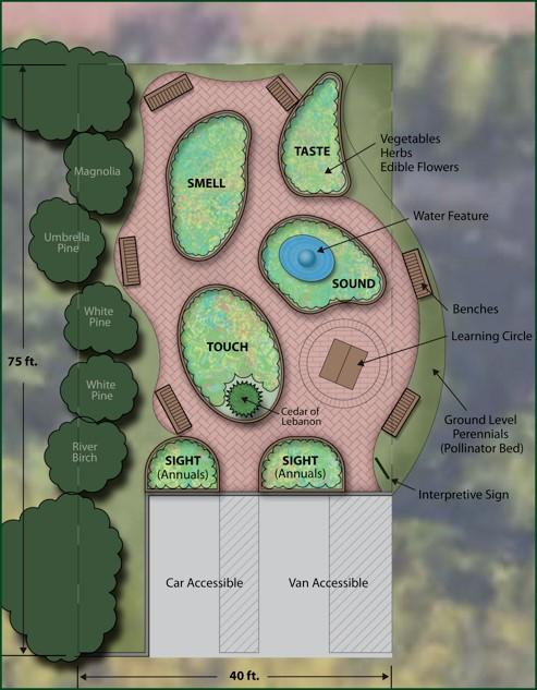 sensory garden.jpg
