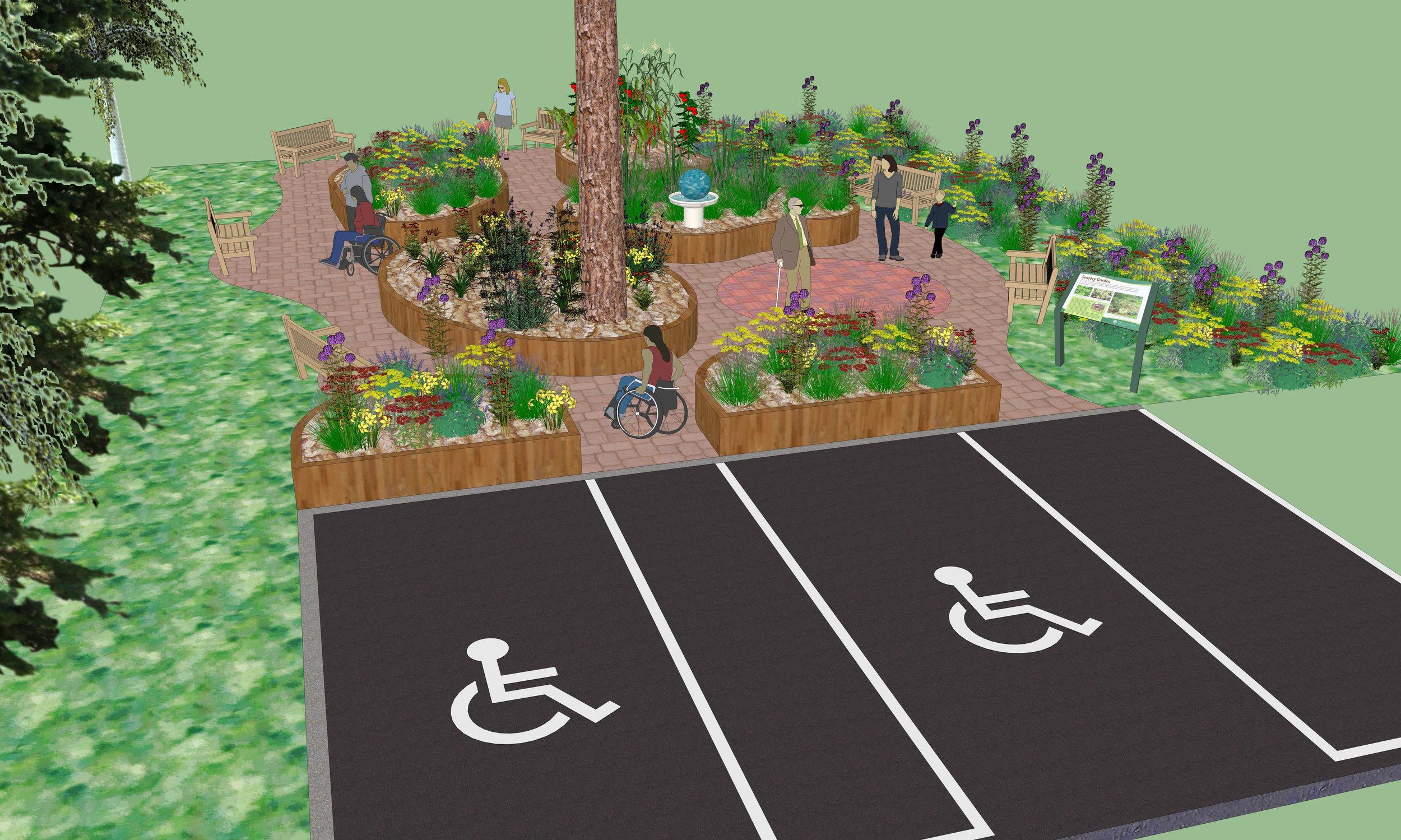 wheelchair access in sensory garden.jpeg