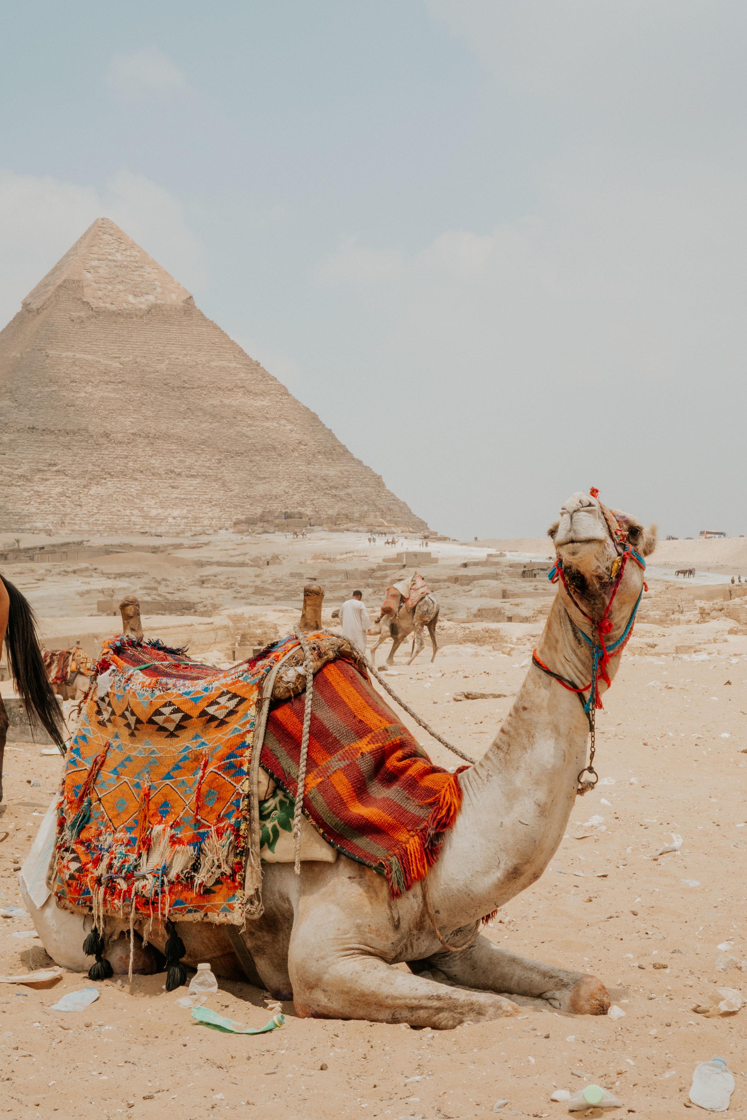 Cairo--148.jpg