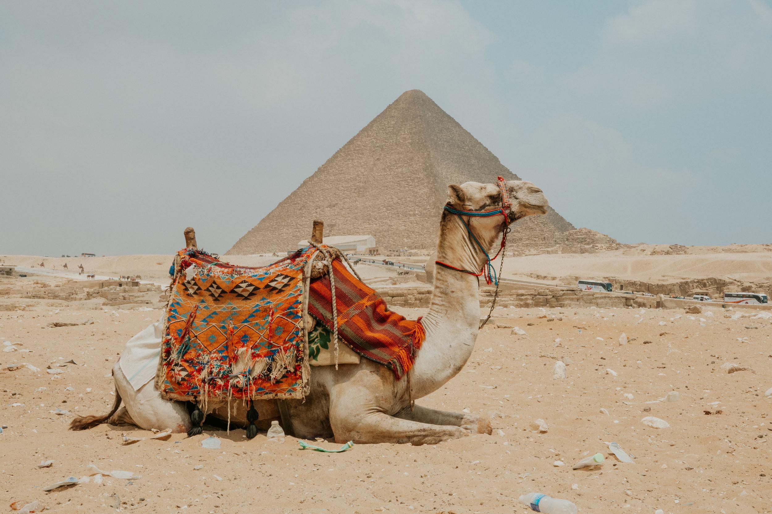 Cairo--153.jpg