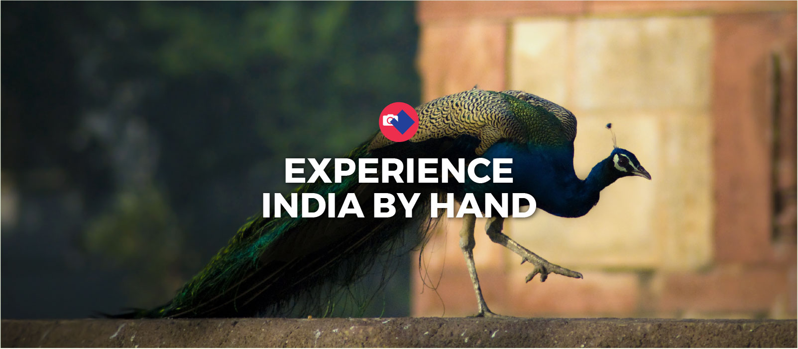 India By Hand Tours