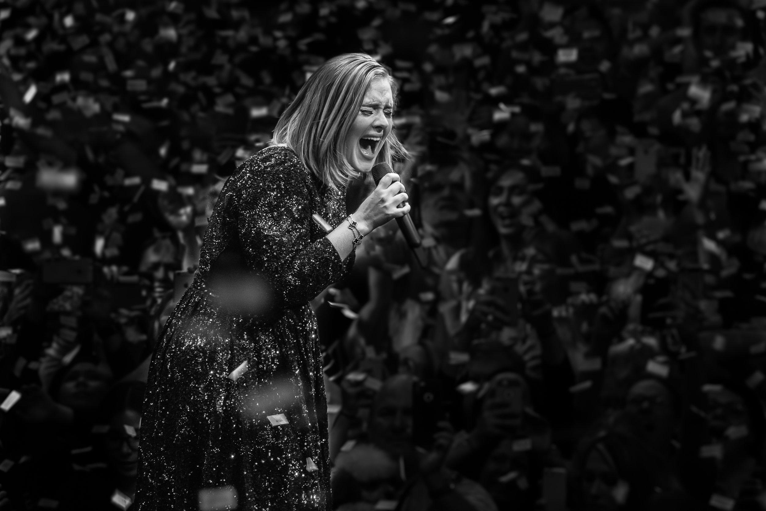 12x8-Adele-IMG_7540.jpg
