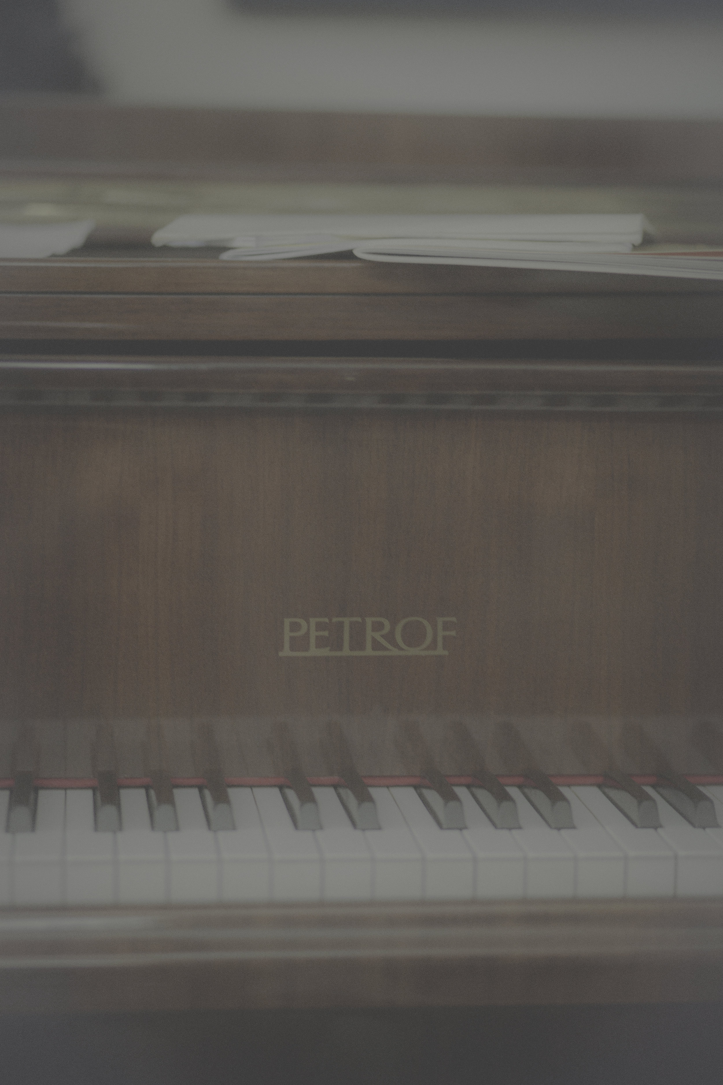 pianopetrof5.jpg