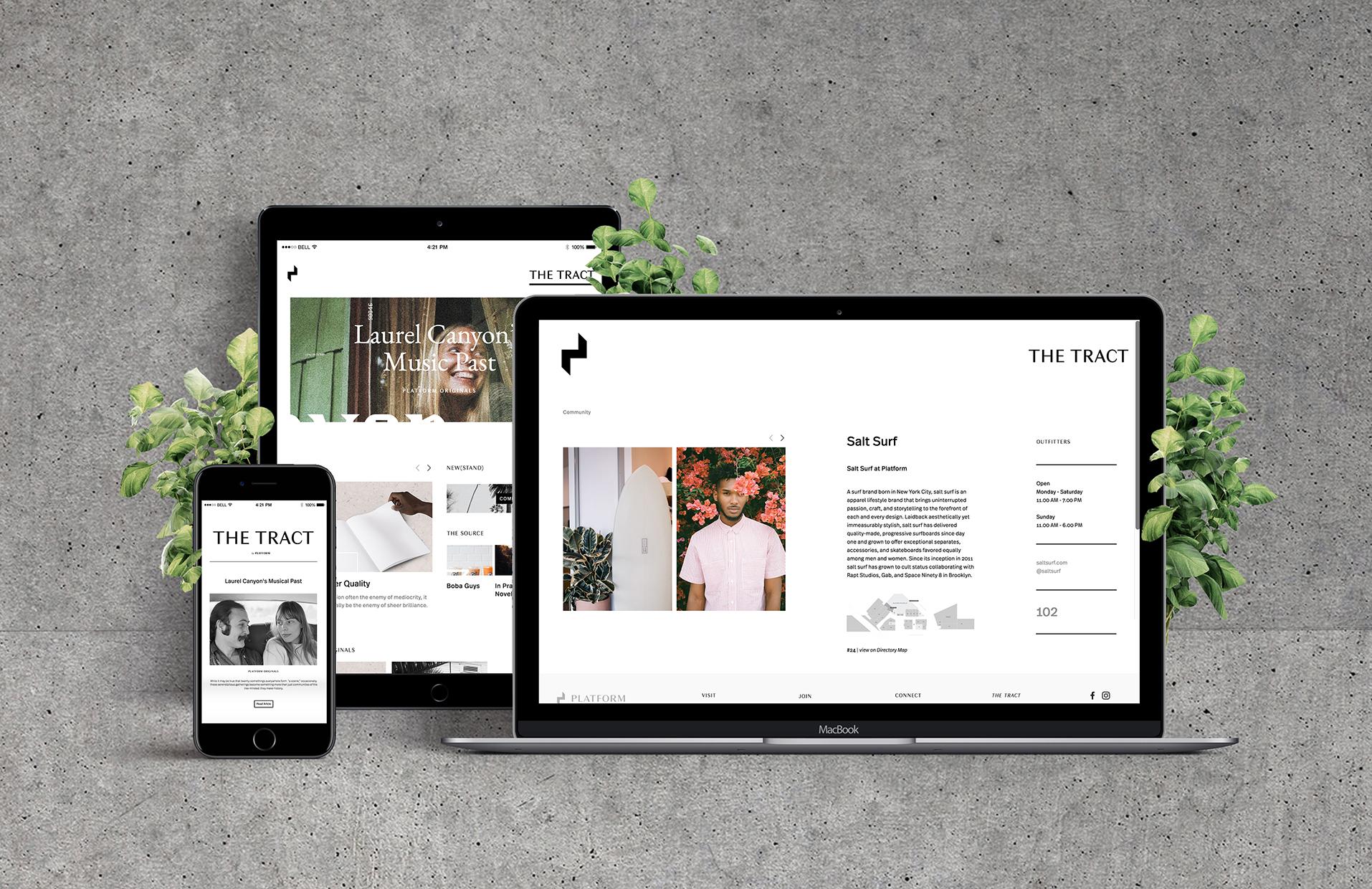 Website + Editorial Design