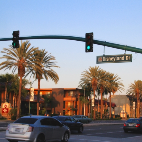 Disneyland Drive (notice the sign overhead)... and more palm trees
