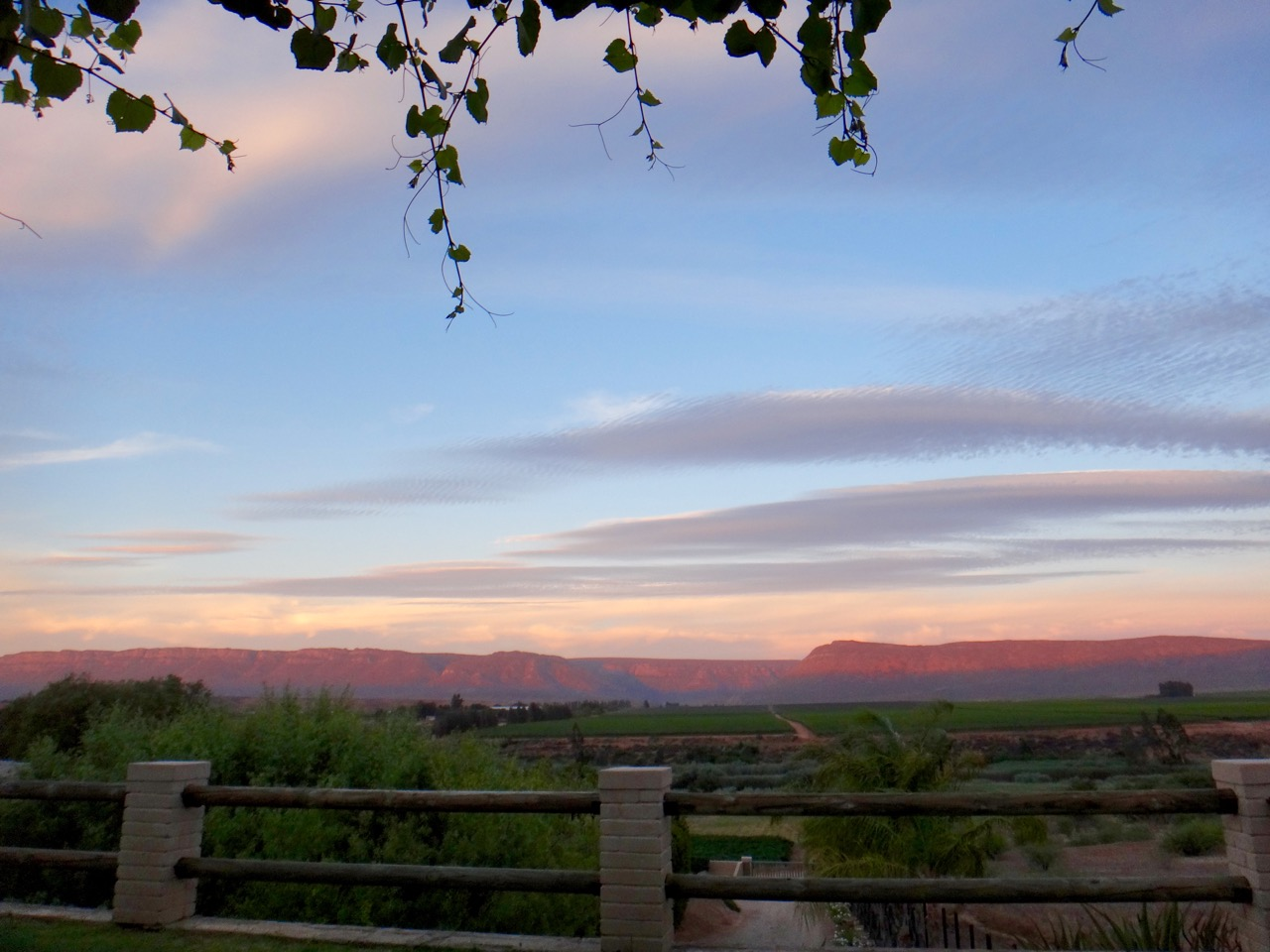 winery sunset.jpg