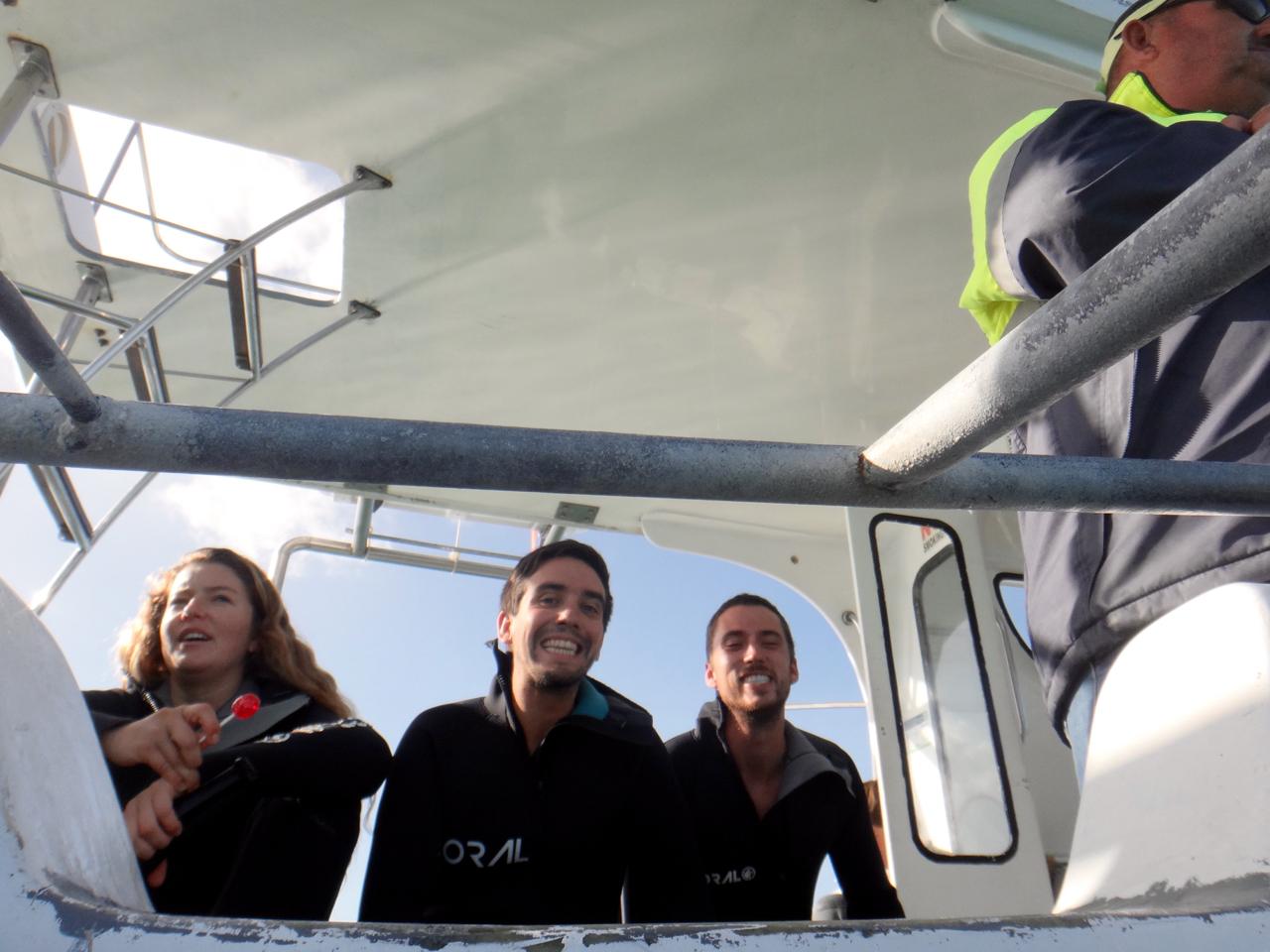 shark dive boys.jpg