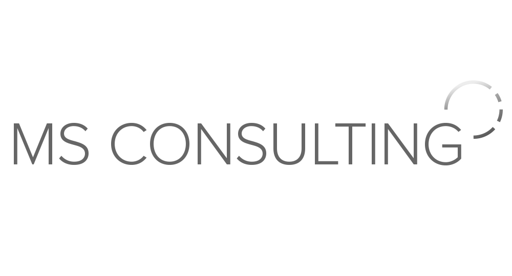 MS-Consulting.jpg