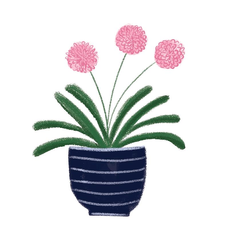 plantpot.png