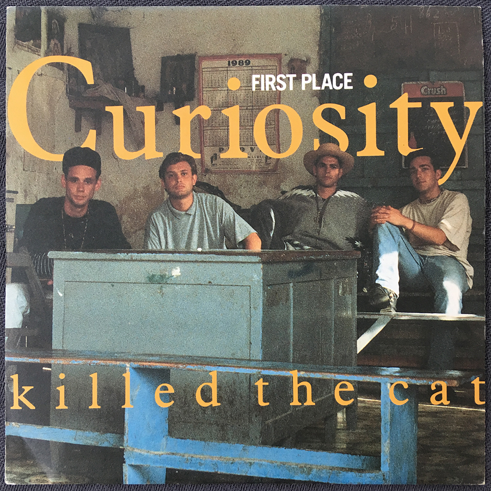 Curiosity Killed The Cat - First Place