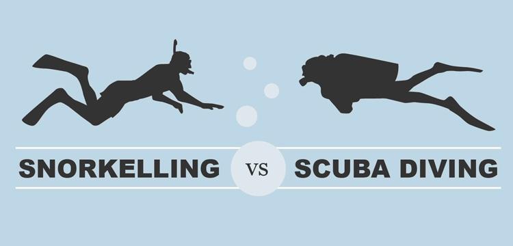 snorkeling-vs-scuba-diving-diverwire.jpg