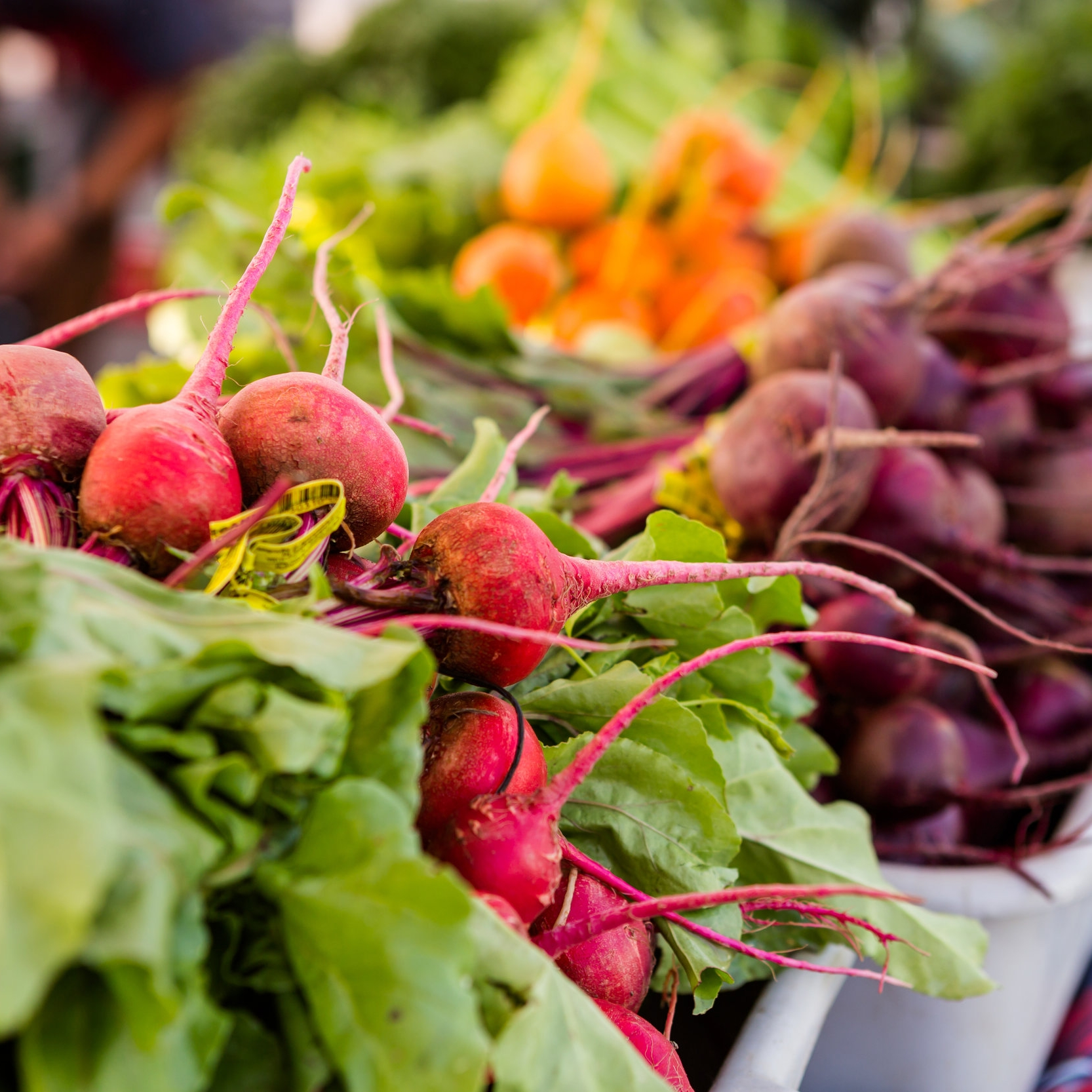farmers market produce.jpg
