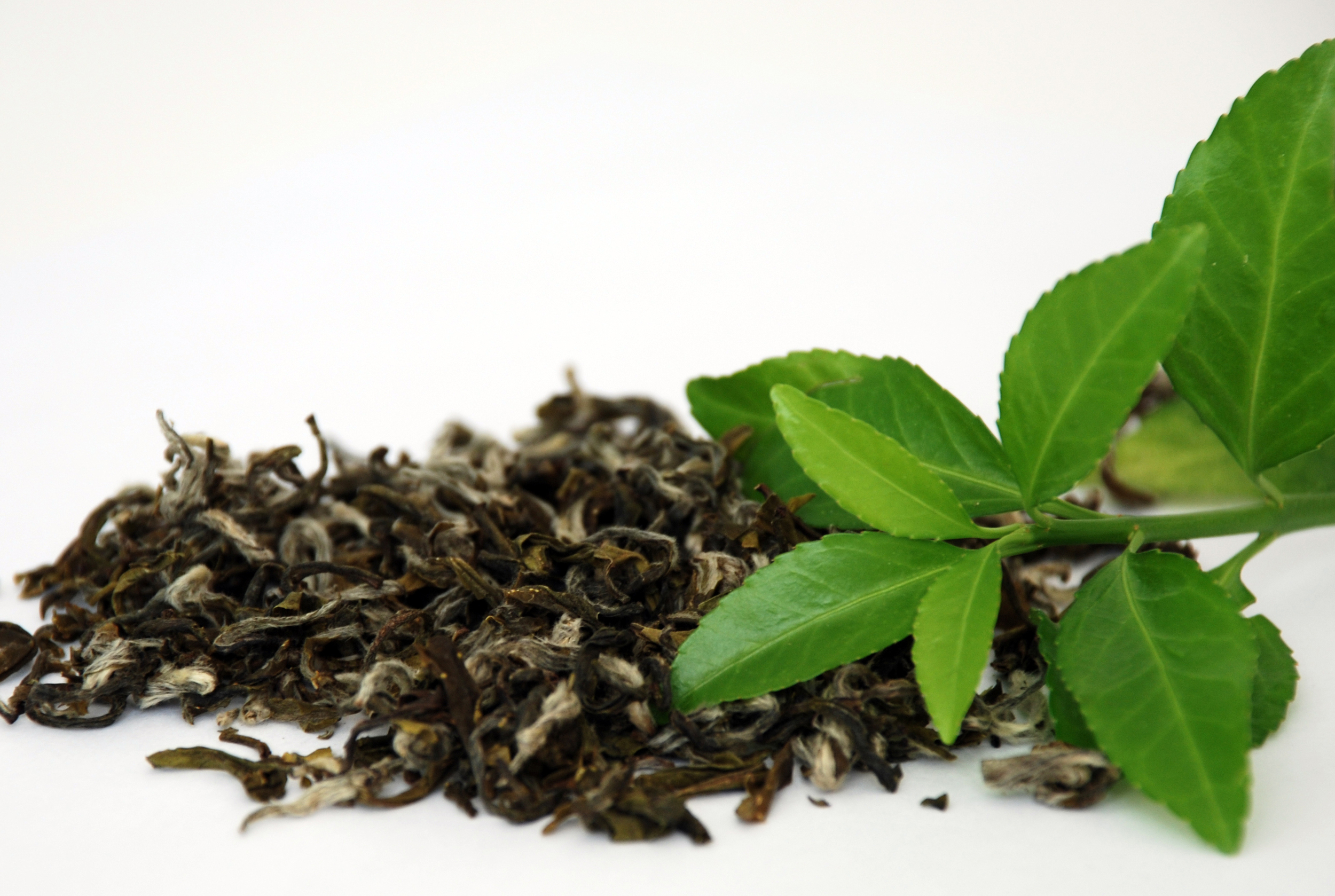 Green tea  filled with antioxidants and nutrients, green tea can improve brain function, fat loss, and many more benefits