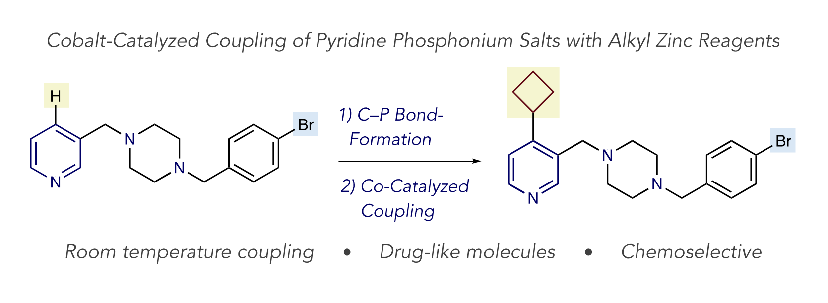 Co-catalyzed coupling.PNG