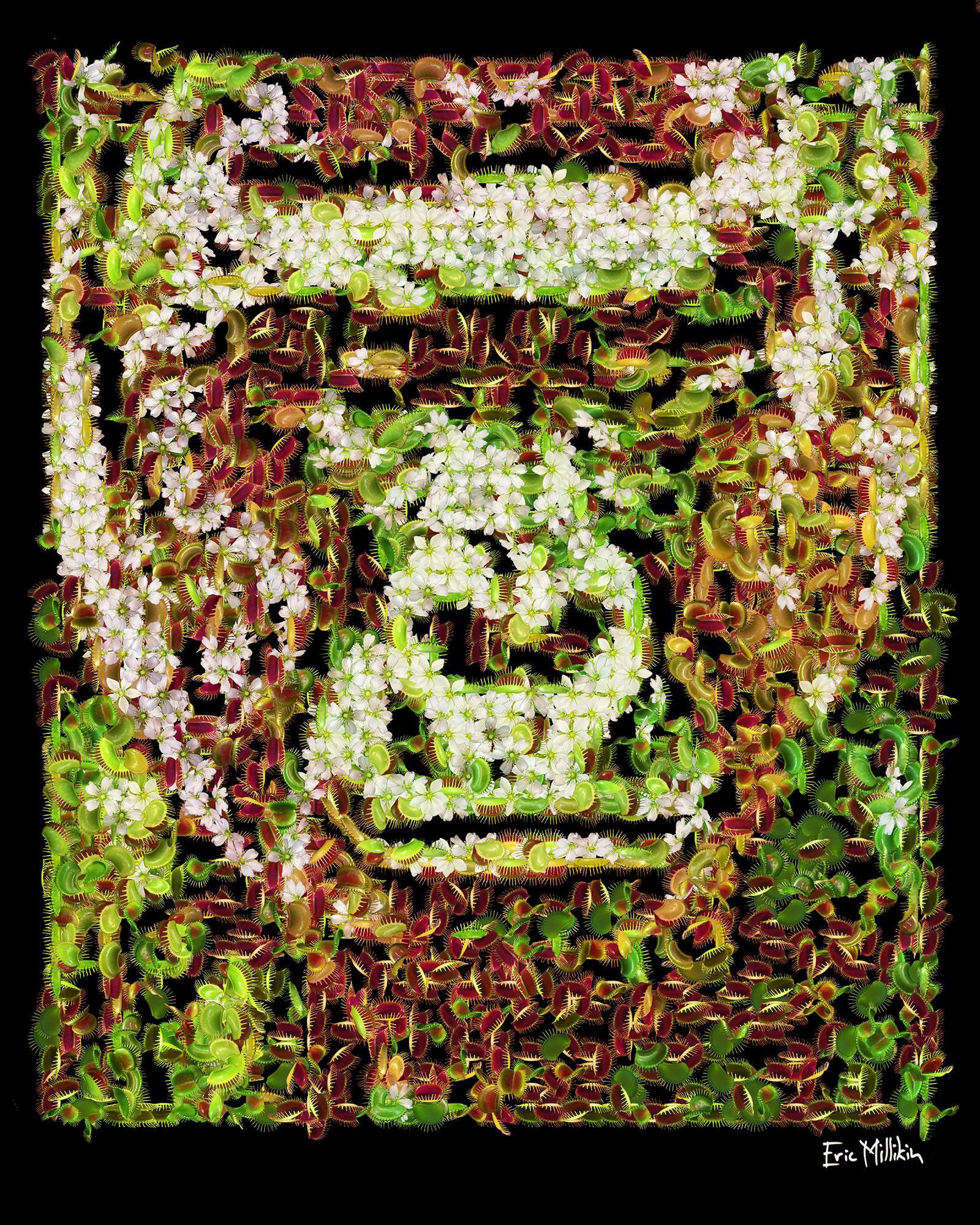 """""""Danger Beast: Harambe""""  2016"""