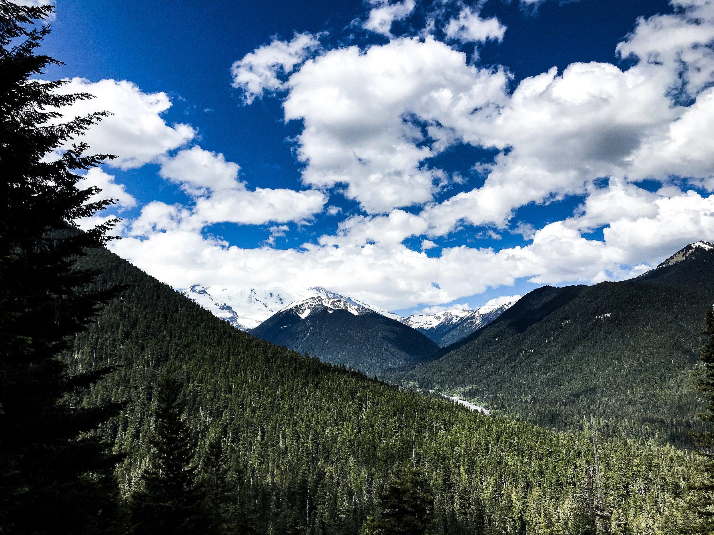 View of Mount Rainier from WA-7