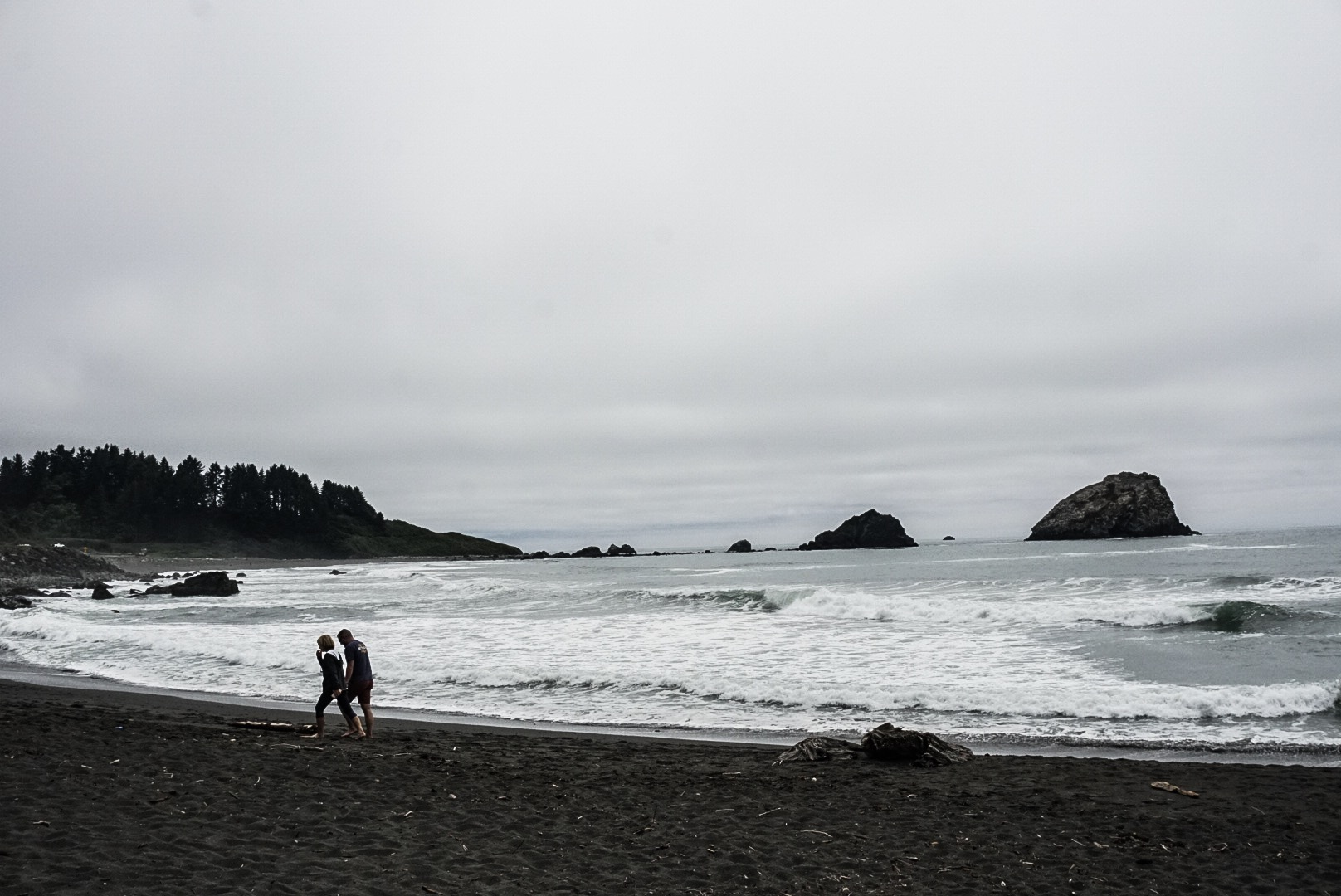 We pulled over to the shoreside after Stout Grove to stretch our legs. Hello Pacific Ocean.