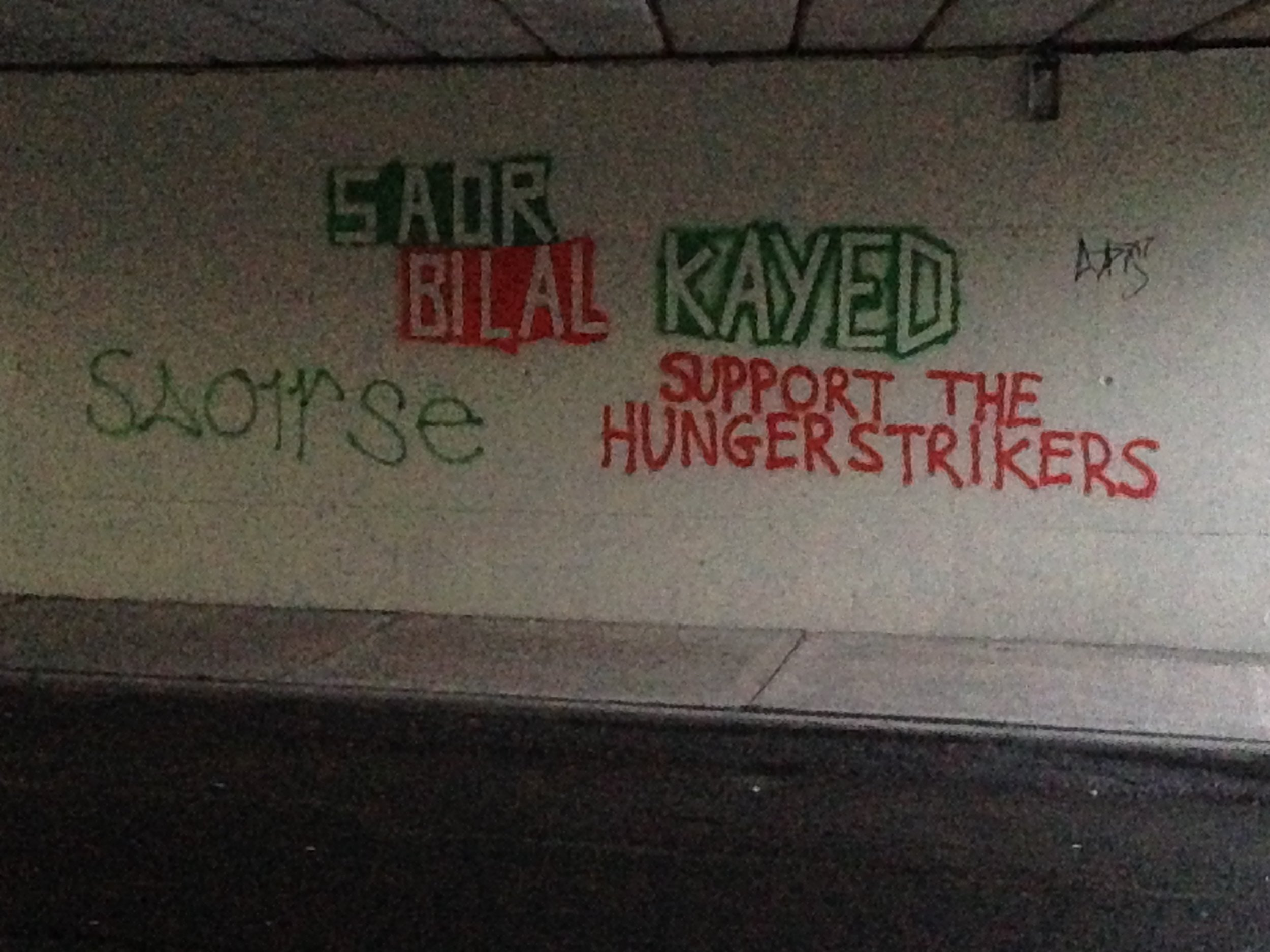 """Green and orange spray painted messages seen underneath the Dyke Road bridge at the beginning of 2017. """" Saoirse""""  meaning """"Freedom"""" and """" Saor Bilal Kayed , SUPPORT THE HUNGERSTRIKERS"""", """" saor""""  meaning """"free""""."""
