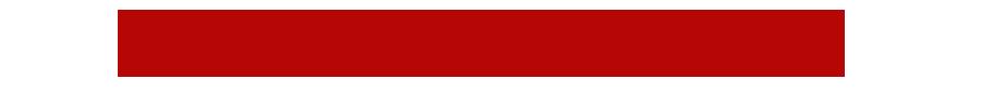 THN logo 1.png