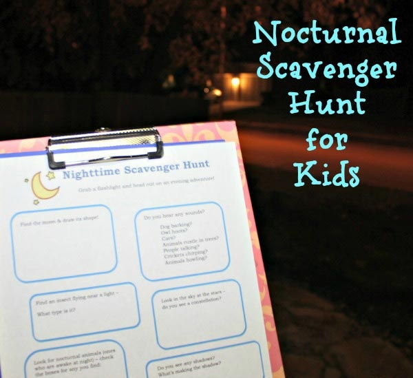Nocturnal Scavenger Hunt
