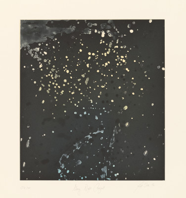Steir, Pat, et Al. Starry Night. 1996. The National Gallery of Art, Washington D.C, USA