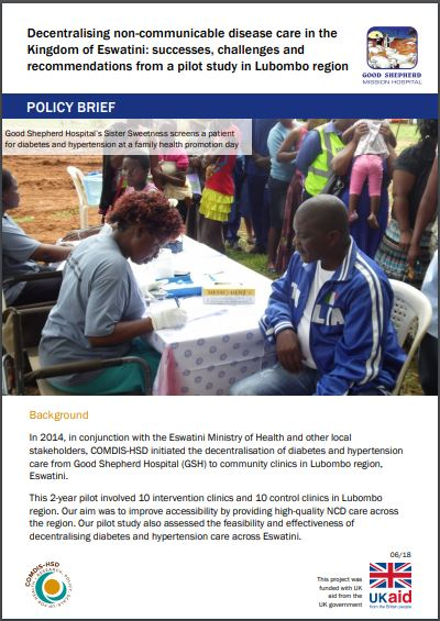 GSH policy brief cover.JPG