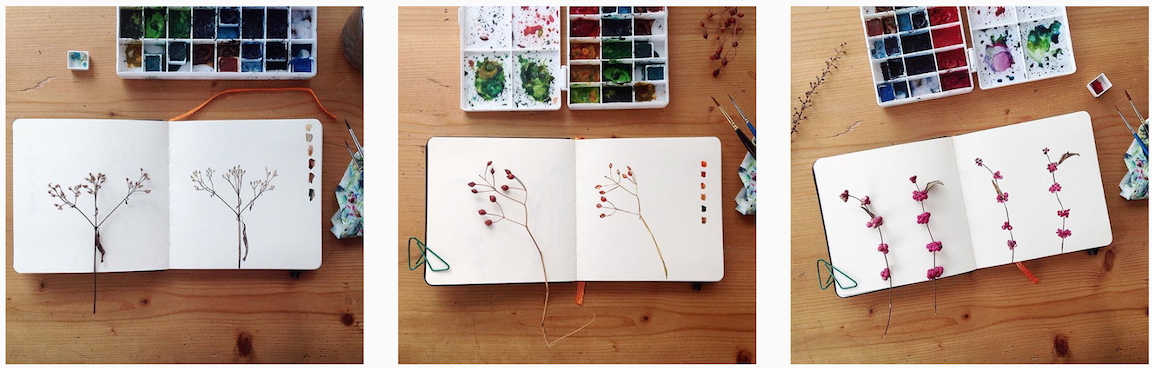 I started painting botanical finds from our backyard in my new journal.