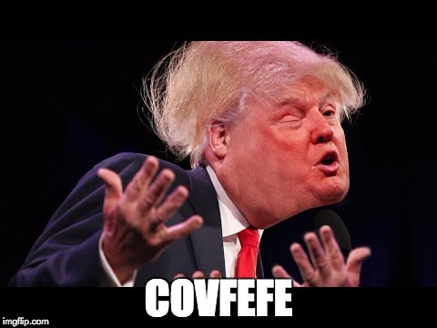 Donald Trump (real).