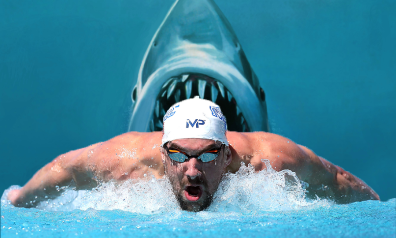 Actual photo of Michael Phelps racing a Great White Shark (it might help him to look around at his surrounding a little more #LoseTheGoggles #WhiteSharksAreDangerous #HaveSomePerspective #LookItUp