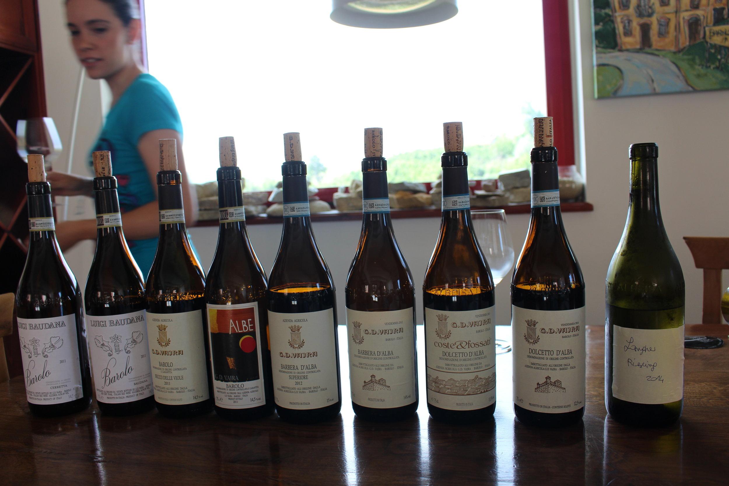 Wine - Taste & Discover
