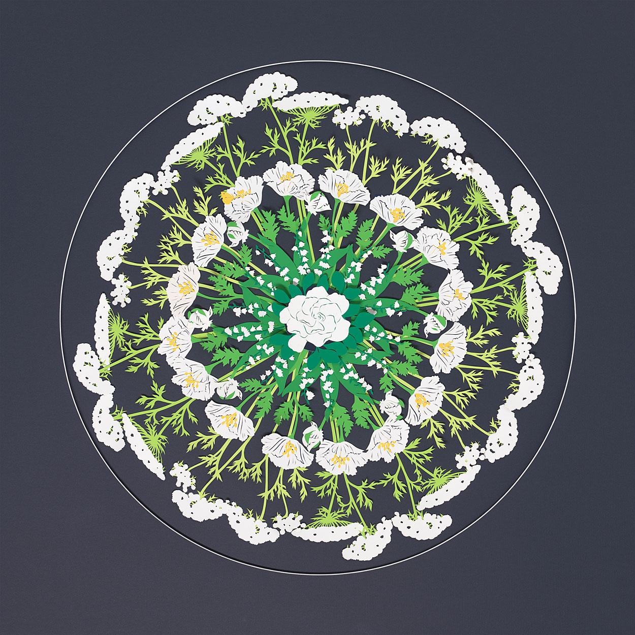 MLW-Abundance-W.jpg