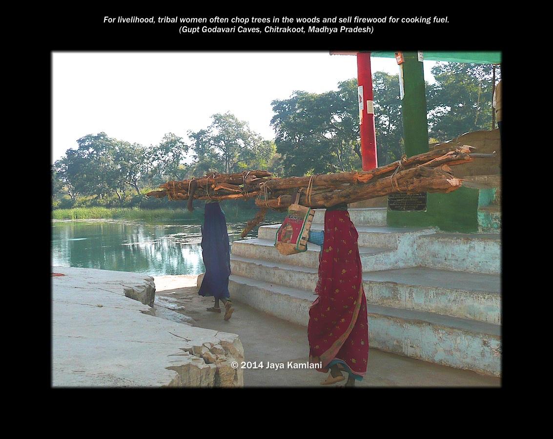 madhya_pradesh_women_carrying_firewood.jpg