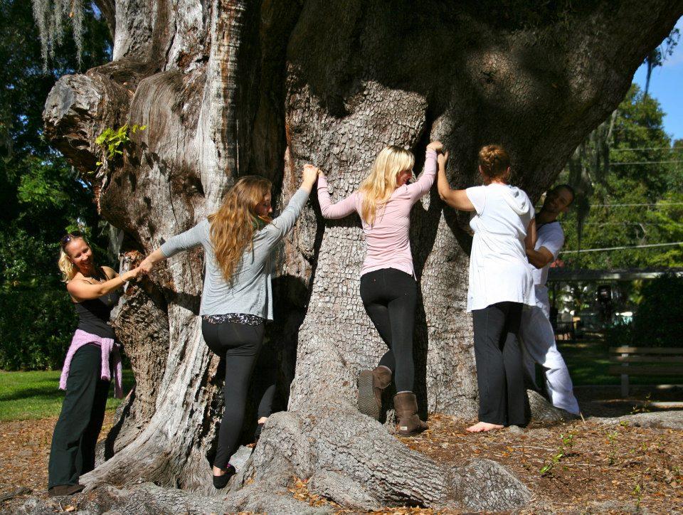 big tree hug ytt.jpg