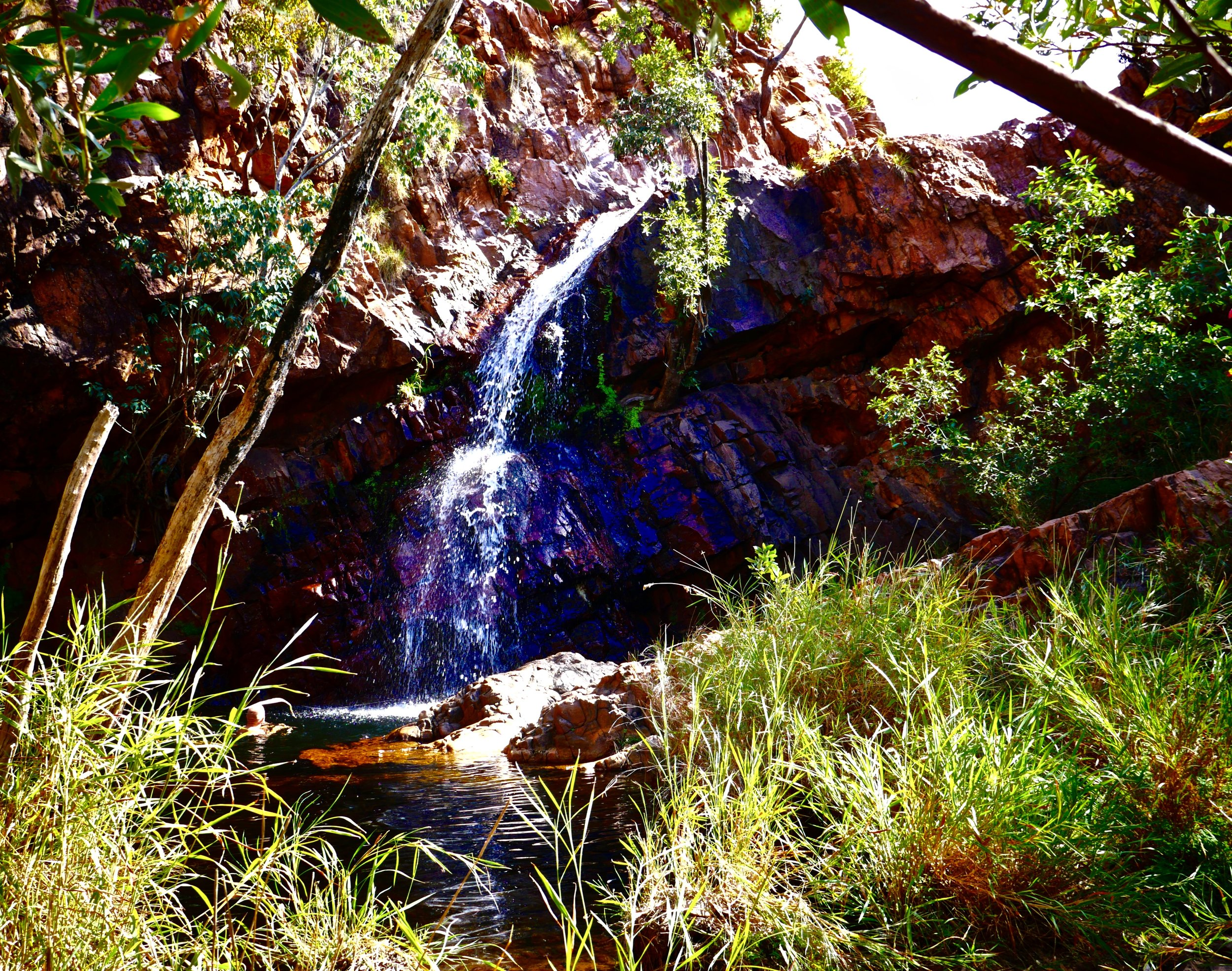 Molly Springs