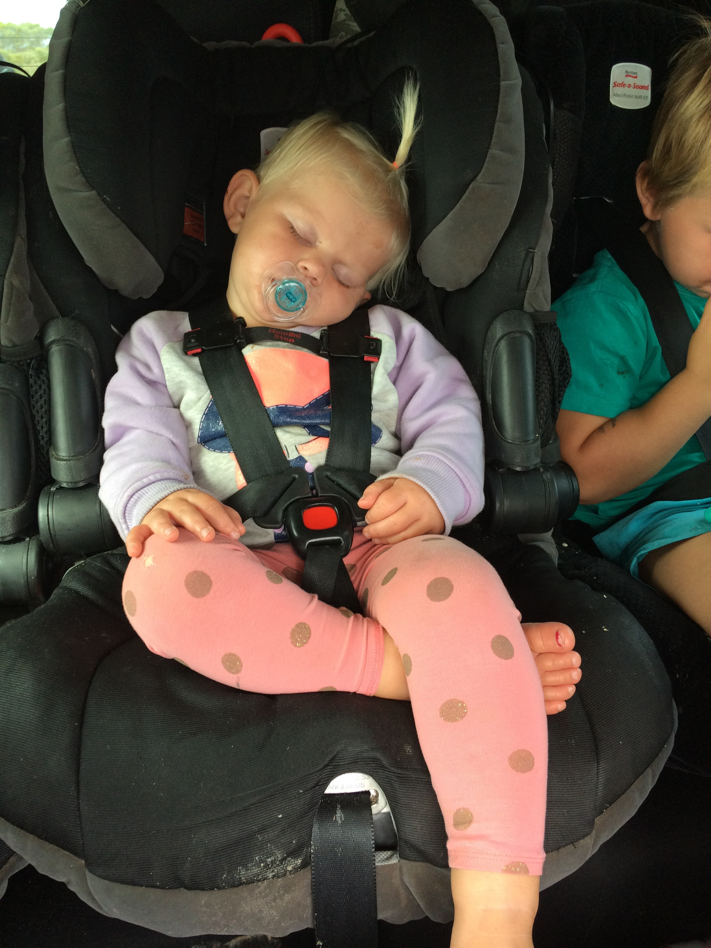 Car naps make for a peaceful travel.