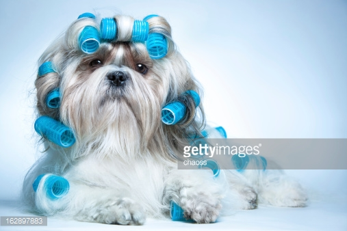 Photo by chaoss/iStock / Getty Images