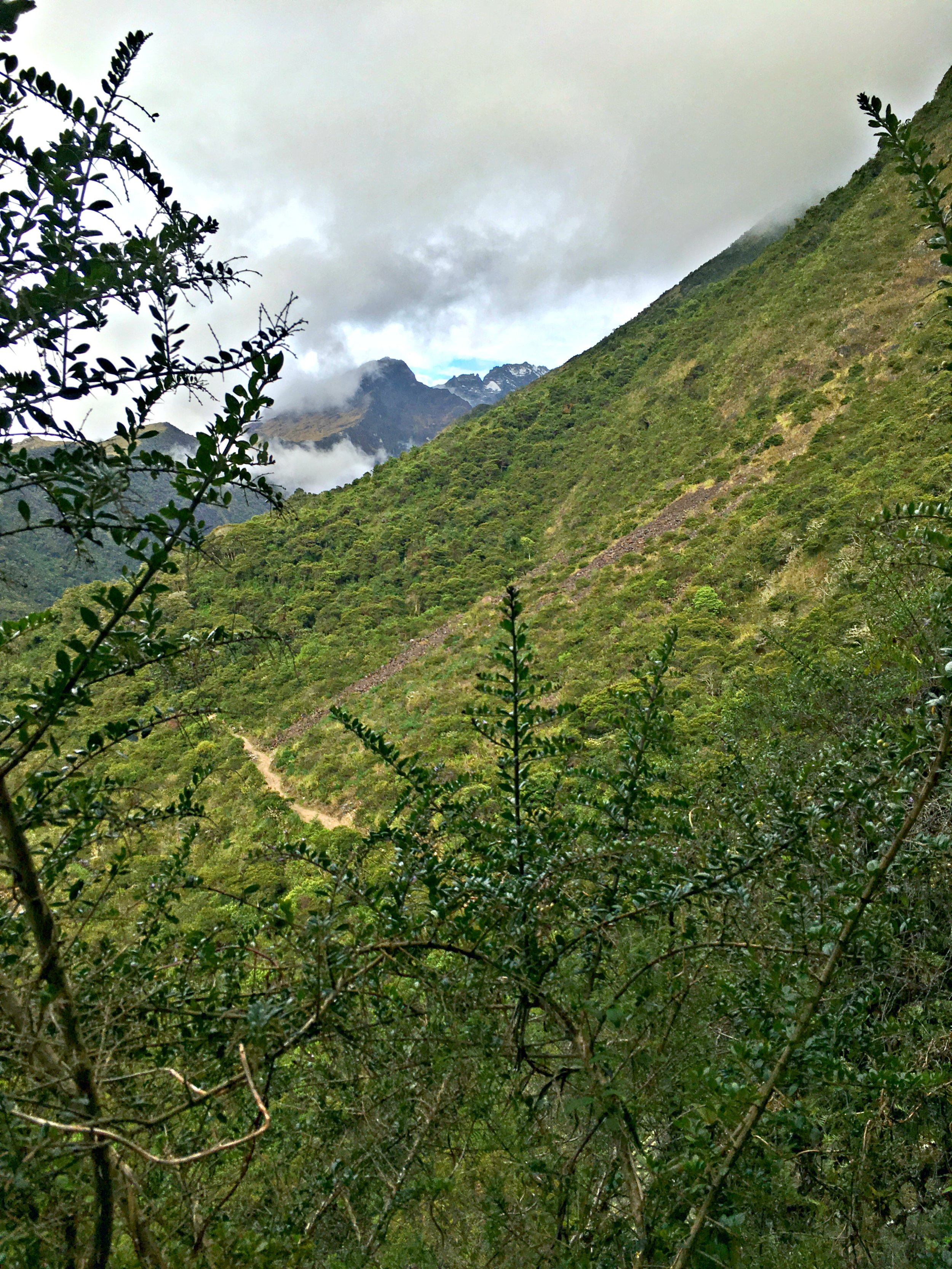 Glacial mountain, tundra, and jungle, all in a days work