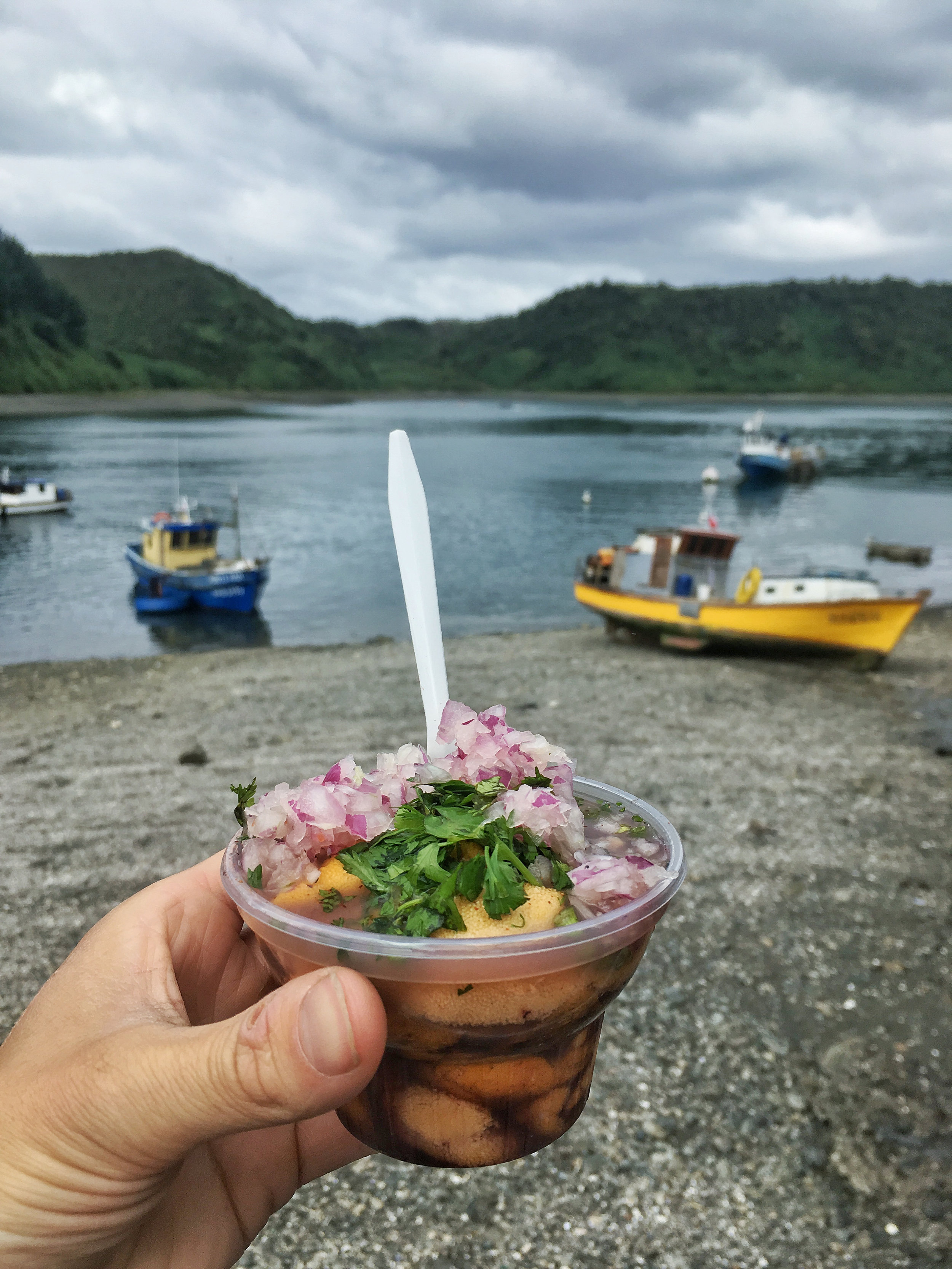 Urchin ceviche, oh so tasty