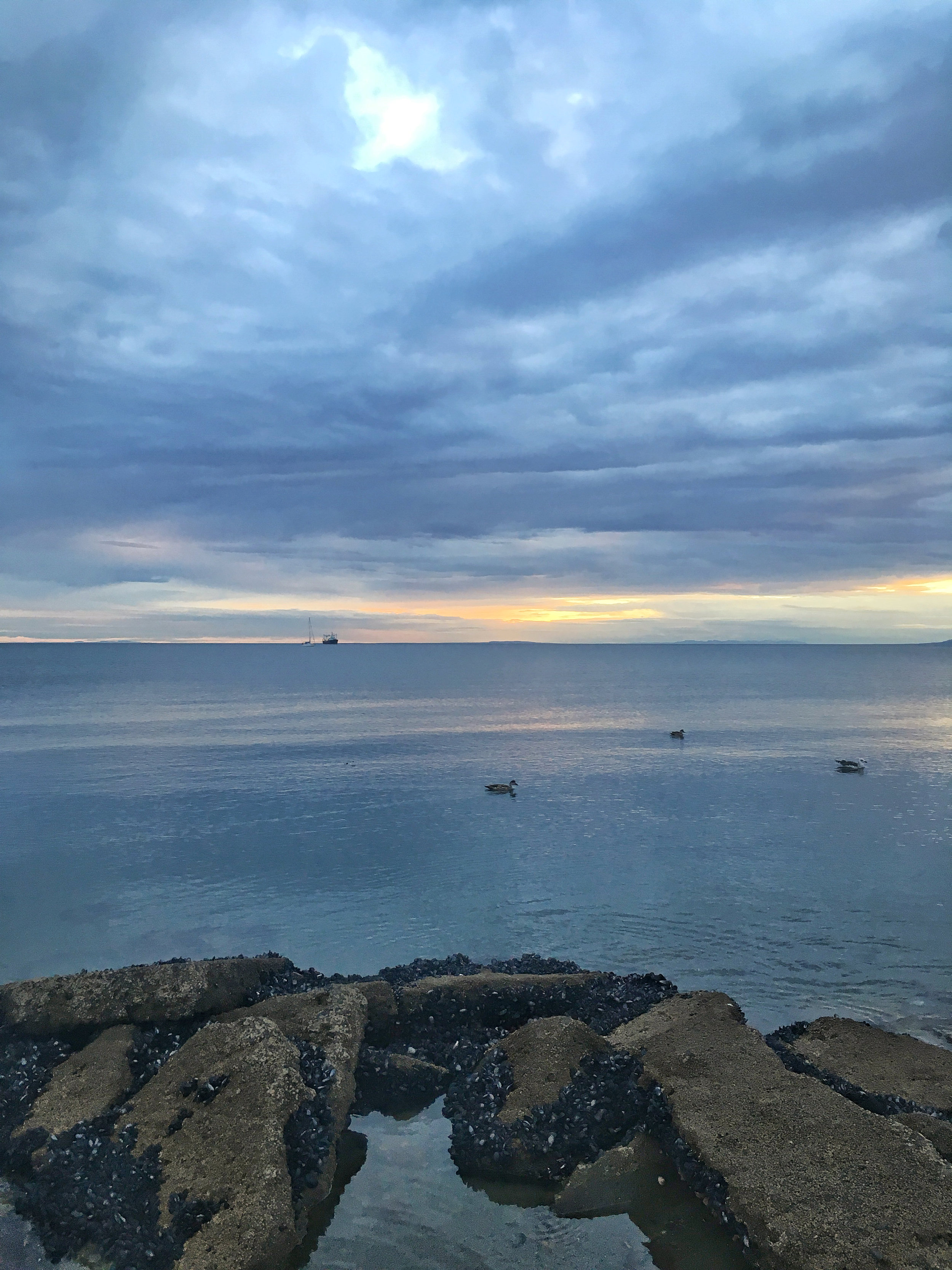 A calm evening on the Strait of Magellan; Punta Arenas, Chile