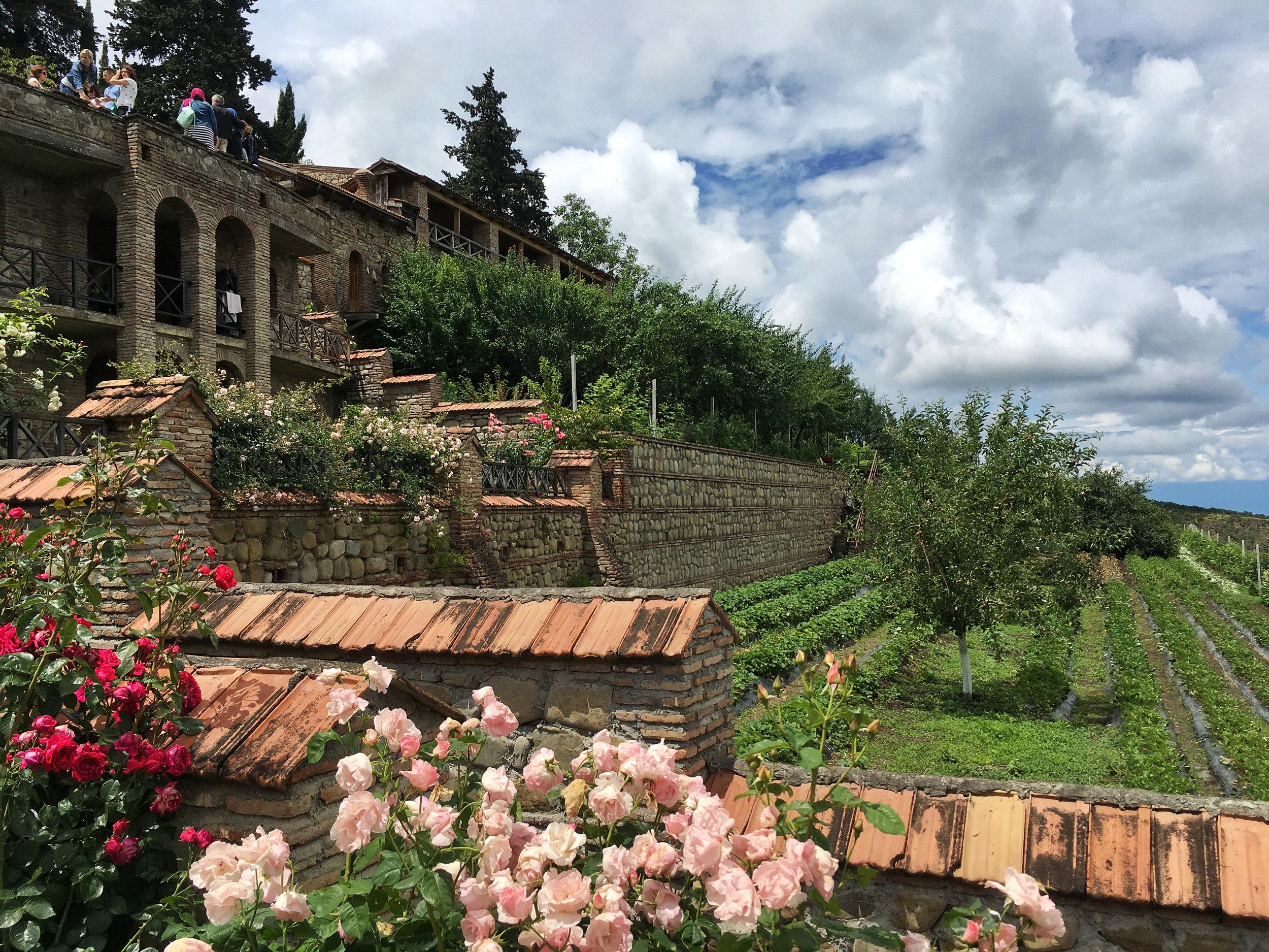 Roses and veggies at St. Ninos Monastery