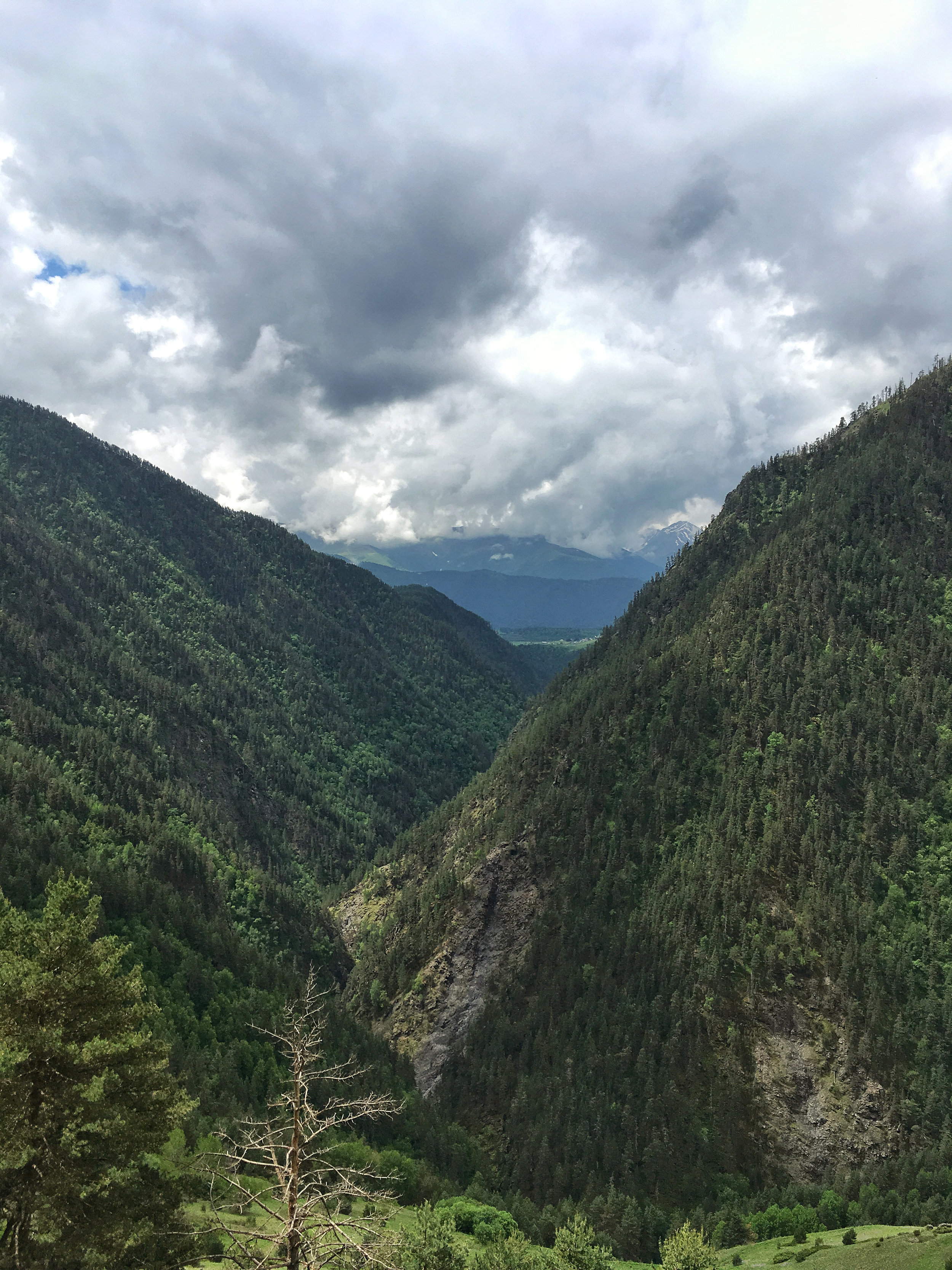 Pine trees and virgin birch forests fill these early valleys
