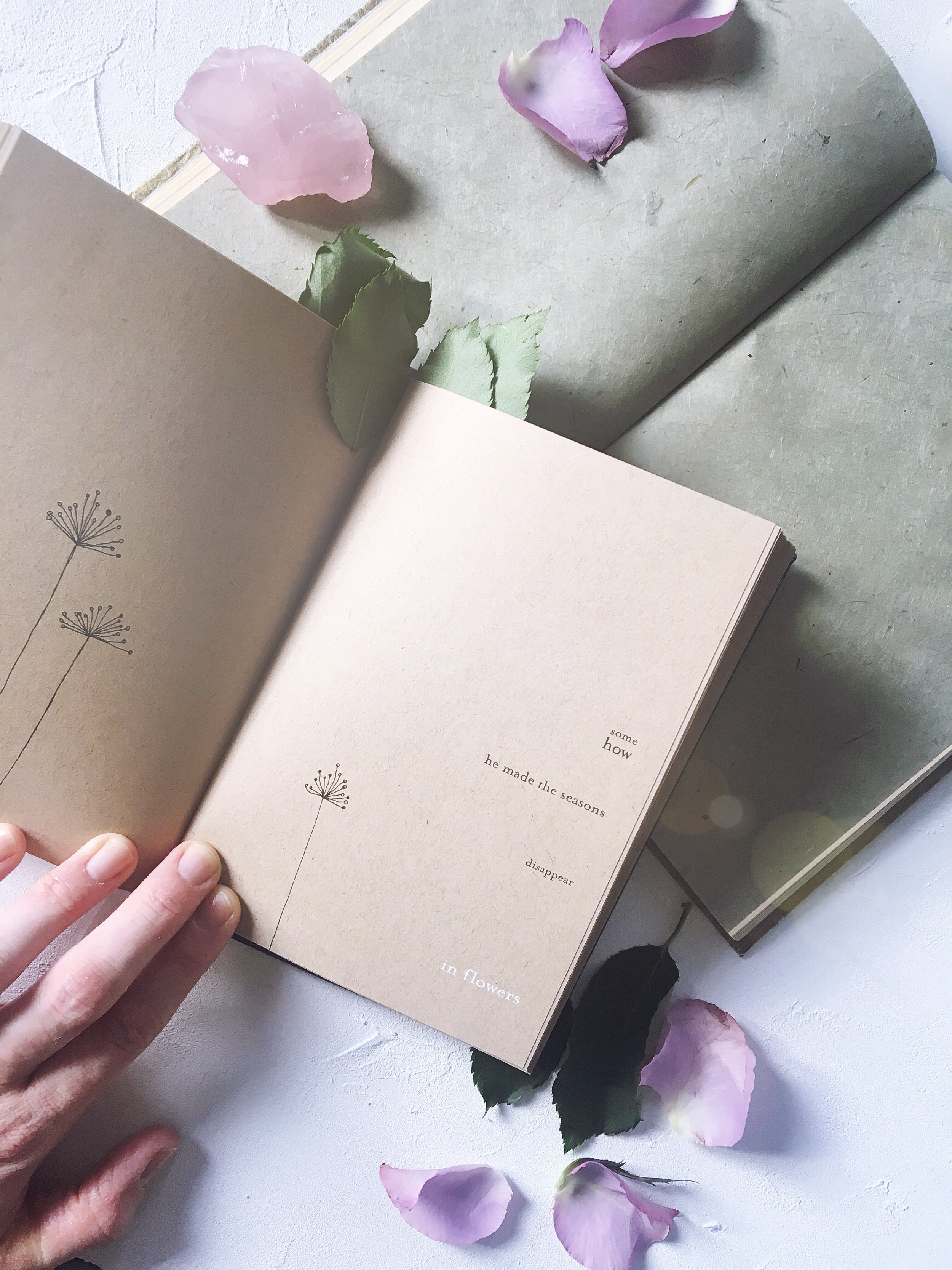 some / how / he made the seasons / disappear / in flowers  - count me the stars, by Kylie Johnson